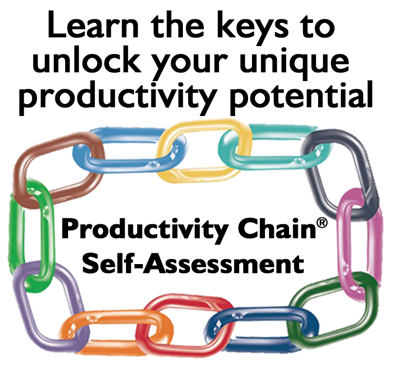 Productivity Chain Self-Assmt website